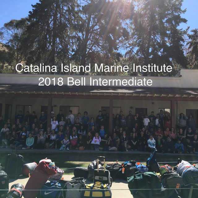 Bell's special field trip Catalina Island teaches students global awareness regarding marine life.